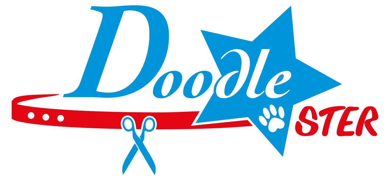 Doodle-STER
